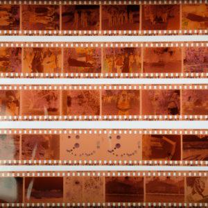 Colour Neg Film