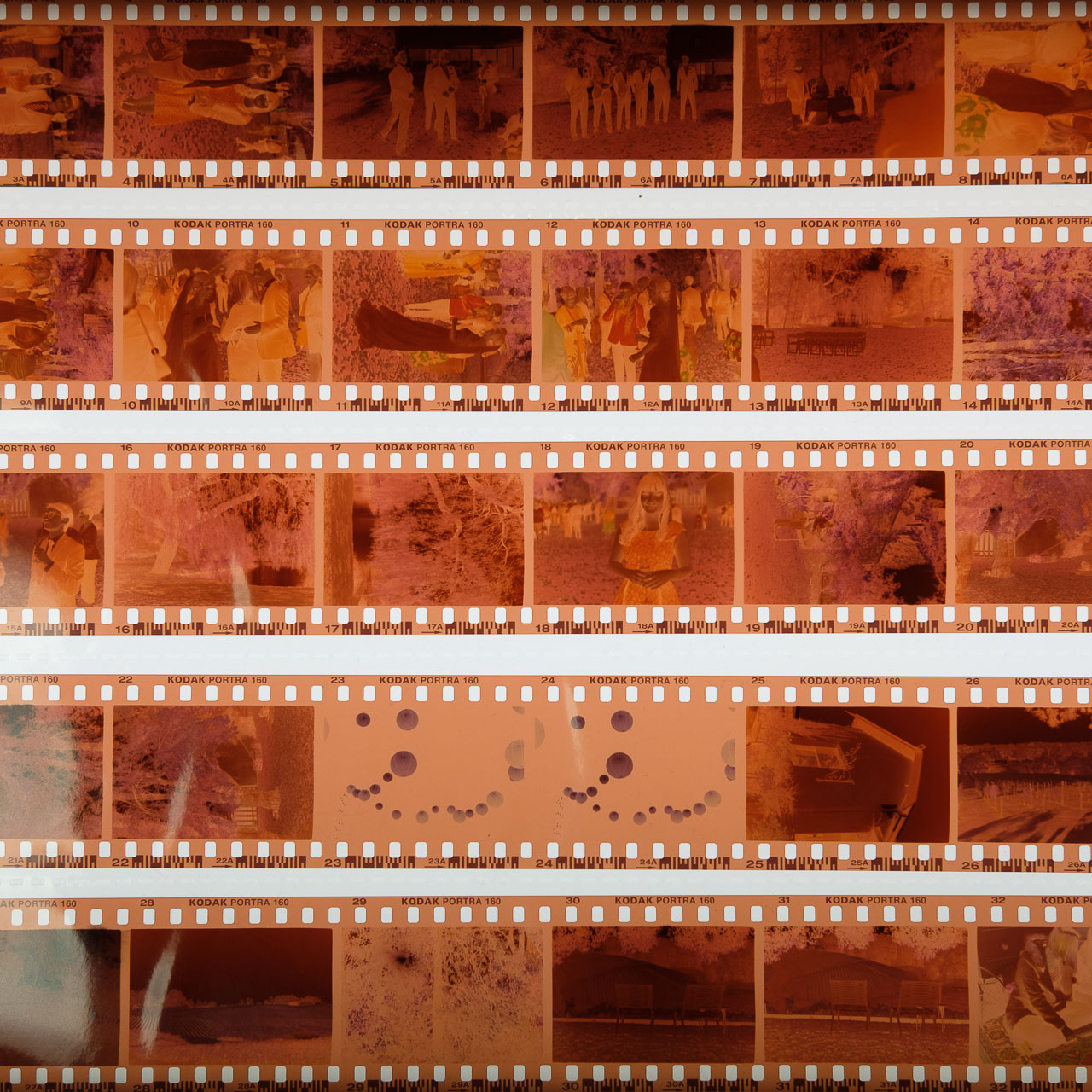 Colour Neg Film